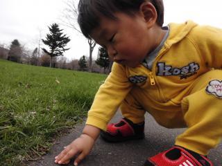 散歩中島公園3
