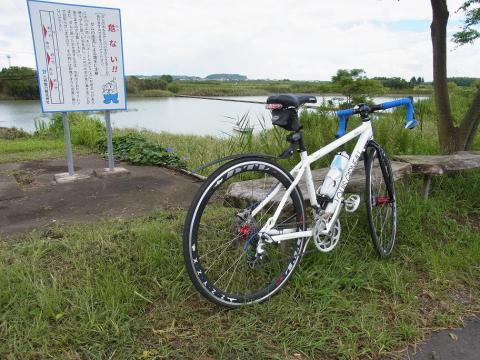 12.9.8新富坂5