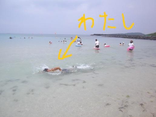07309 (2) - コピー