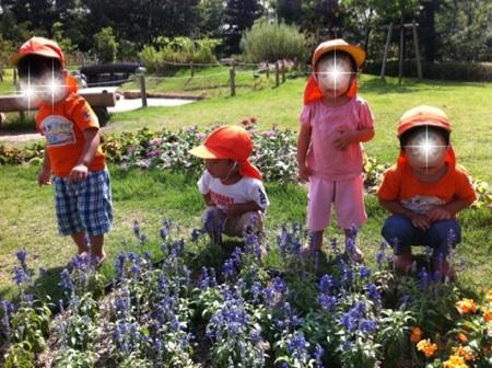 fc2blog_201209061439553e6.jpg