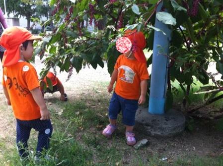 fc2blog_20120914142903e0e.jpg
