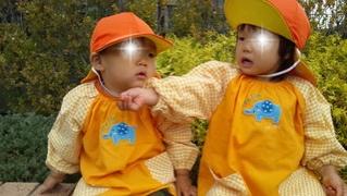 fc2blog_201211081209042ed.jpg