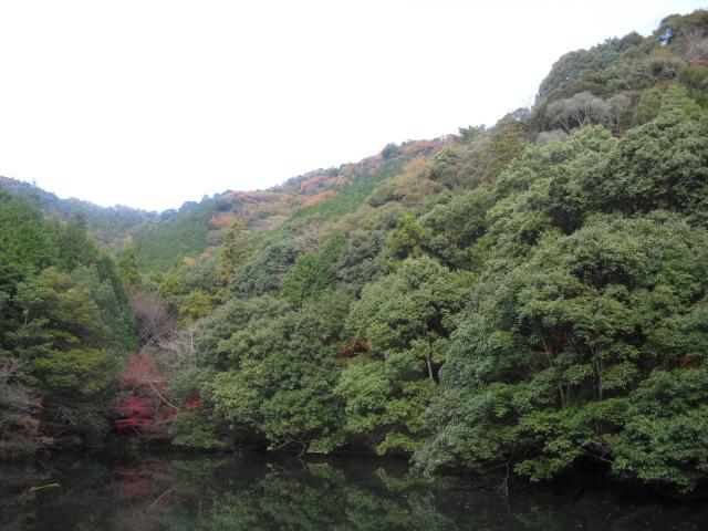 紅葉の白馬渓と湯布院久大本線ローカル列車の旅 042