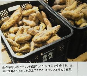 生の芋を収穫できない時期に、<br />この冷凍芋で生産する