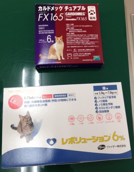 猫のフィラリア予防薬