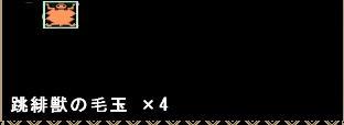跳緋獣の毛玉(1)