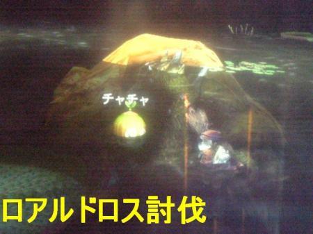 mh3g2-5_convert_20130107091521.jpg