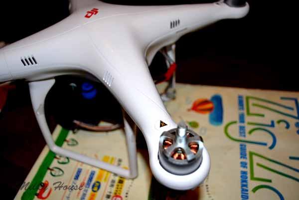 birdeye36.jpg