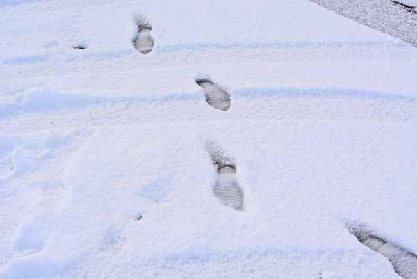 new_snow10.jpg