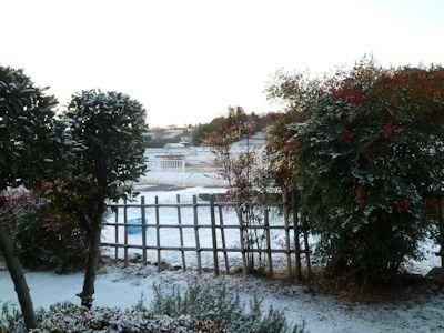 これって初雪?風花?