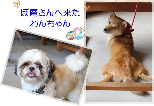 14らいきゃく (2)