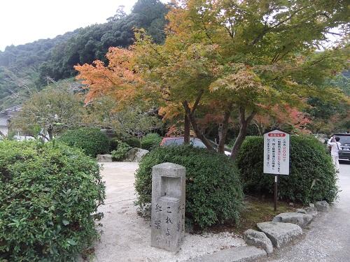 20141031h.jpg
