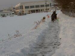 130115除雪1
