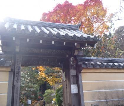 浄瑠璃寺山門