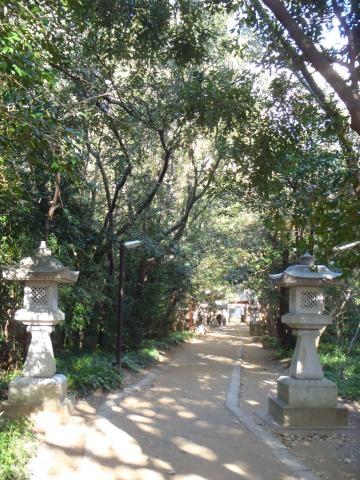 PC240188_convert_20121230013040[1]花の窟神社2