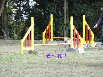 2012-11-18-2.jpg