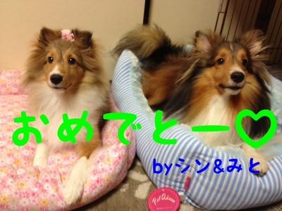 shinandmitochan1.jpg