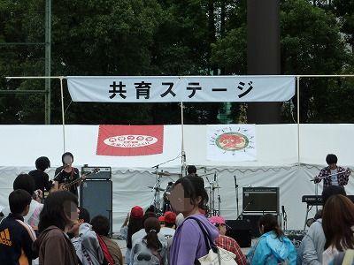 P1180407.jpg