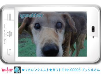mq_gautomo_00003ガウッタープー爺