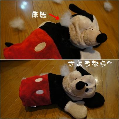 1-3_20120709005428.jpg