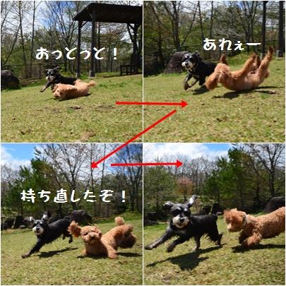 10_20120530163814.jpg