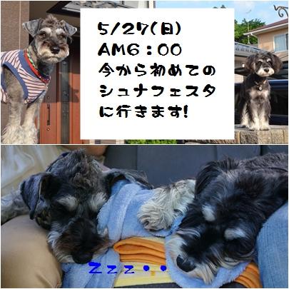 11_20120604000813.jpg