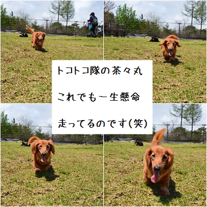 13_20120530224629.jpg