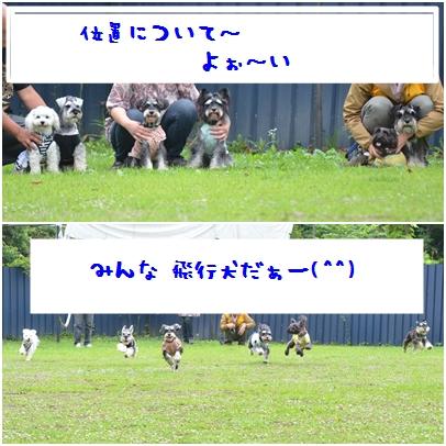 14_20121023000128.jpg