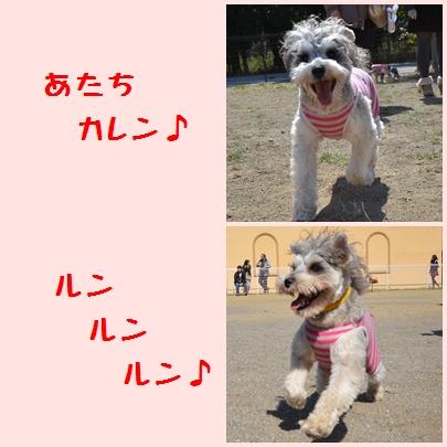 1_20120508231402.jpg