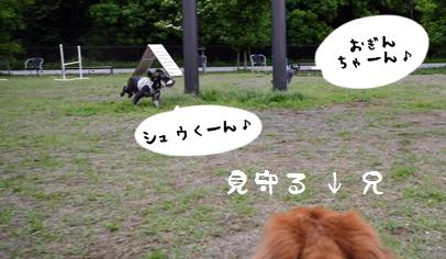 1_20120703233436.jpg