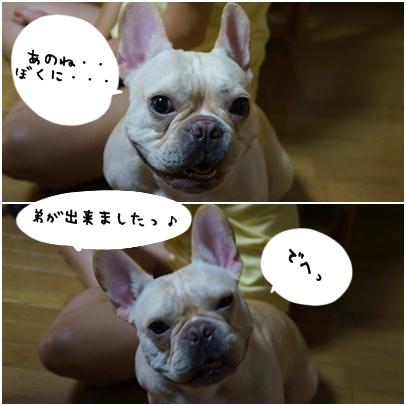 1_20121024140640.jpg