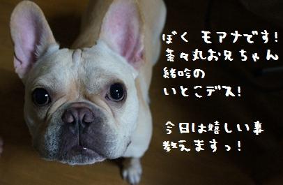 2_20121024140640.jpg