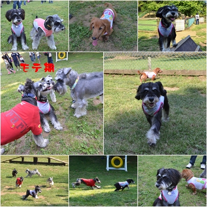 3-1_20120605232308.jpg