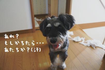 5_20120820235440.jpg