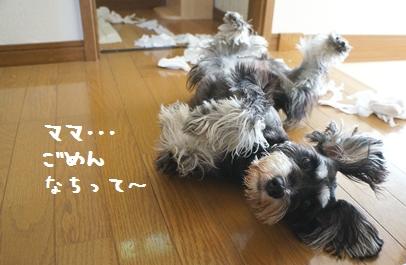 6_20120820235440.jpg
