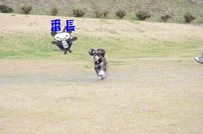 8_20120427001338.jpg
