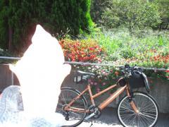 津久井湖城山公園花の苑池でチョコ&バニラソフトクリーム