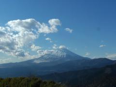 大野山山頂から
