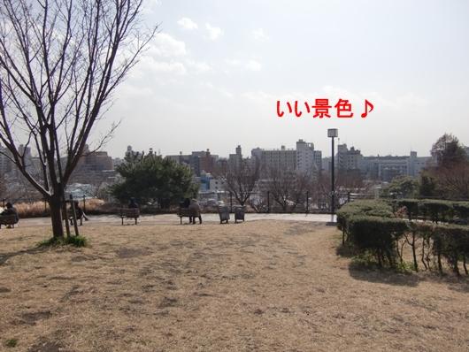 CIMG9278.jpg