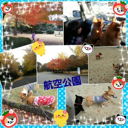 20121128010111_convert_20121128133639.jpg