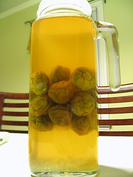 ume sour - ume in the middle