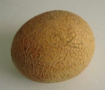 oishi-melon.jpg