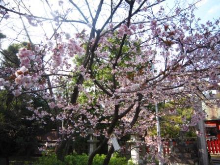 車折神社IMG_3815 - コピー