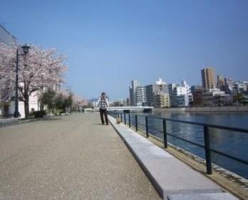 桜満開IMG_4065 - コピー