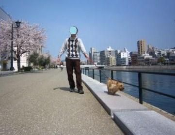 桜満開IMG_4067 - コピー