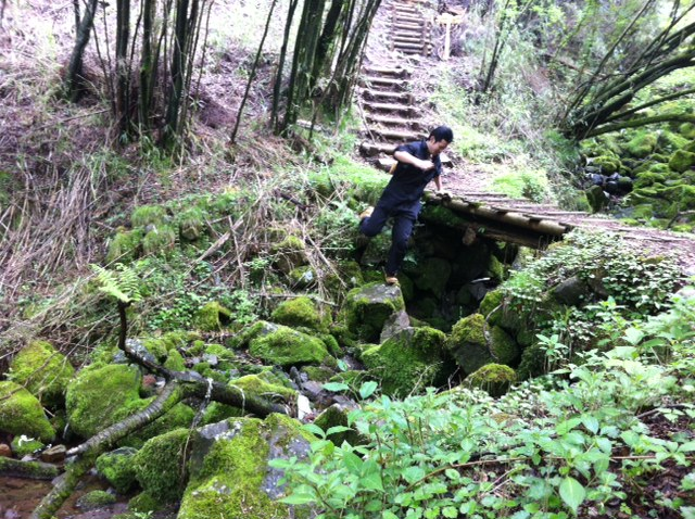 箱根 橋に飛び込む