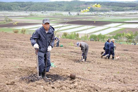 20120527萌の丘 千本桜植栽ボランティア