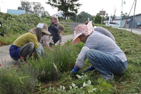 20120830すずらんの会が草刈りボランティア