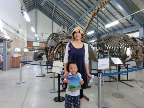20120825化石体験館が来館者1万人達成!