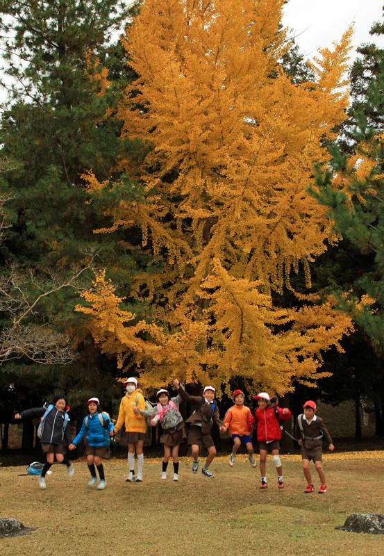 F奈良公園